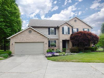 Single Family Home For Sale: 9692 Kelly Drive