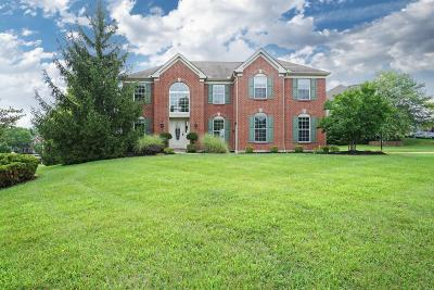 Single Family Home For Sale: 5192 Little Turtle Drive