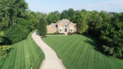 Turtle Creek Twp Single Family Home For Sale: 369 Aspen Ridge Drive