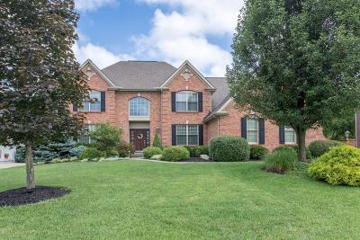 Clermont County Single Family Home For Sale: 6712 Sandy Shores Drive
