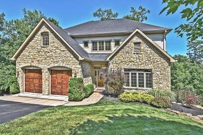 Cincinnati Single Family Home For Sale: 738 Springhill Lane