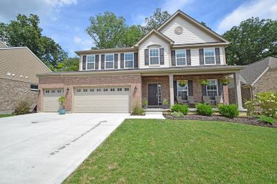 Single Family Home For Sale: 7510 Marsh Creek Lane
