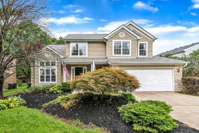 Single Family Home For Sale: 9729 Snider Road