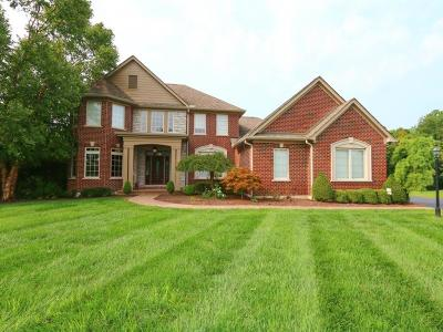 Clermont County Single Family Home For Sale: 1007 Legendwood Drive