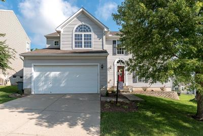 Single Family Home For Sale: 120 Easton Manor Drive