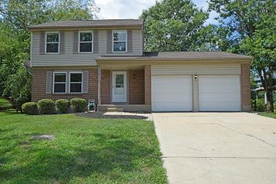 Single Family Home For Sale: 9175 Green Place