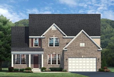 Single Family Home For Sale: 53 Century Farm Drive