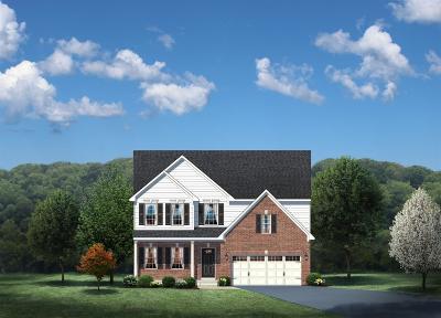 Single Family Home For Sale: 54 Century Farm Drive