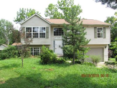 Single Family Home For Sale: 2076 Cosmos Road