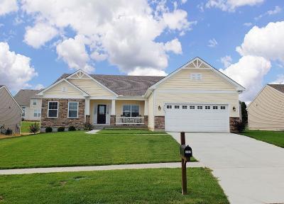 Single Family Home For Sale: 3123 Artisan Way