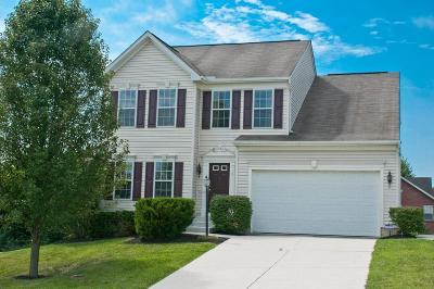 Single Family Home For Sale: 53 Ridge Wood Drive