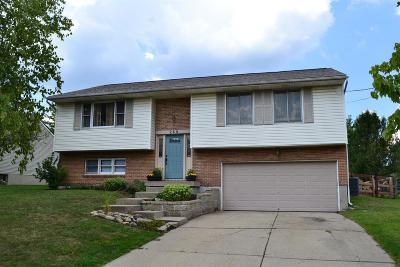 Single Family Home For Sale: 260 Stillpass Way