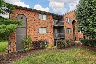 West Chester Condo/Townhouse For Sale: 9497 Canyon Pass Drive