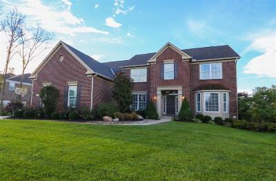 Single Family Home For Sale: 6557 Palmetto Drive
