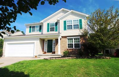 Single Family Home For Sale: 4980 Jessica Suzanne Drive