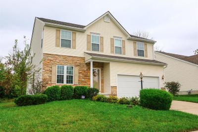 Single Family Home For Sale: 5225 Snow Valley Drive