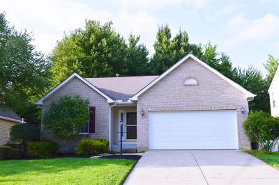 Single Family Home For Sale: 1429 Windstar Court
