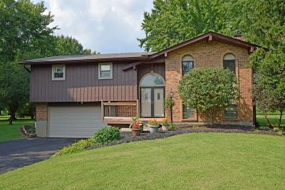 Single Family Home For Sale: 2466 St Rt 123
