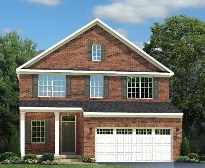 Single Family Home For Sale: 1060 Trovillo Drive