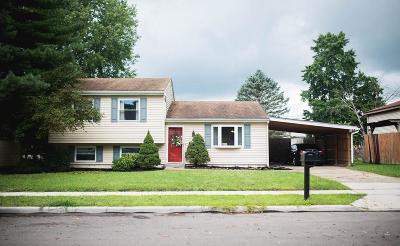 Harrison Single Family Home For Sale: 333 Miller Court