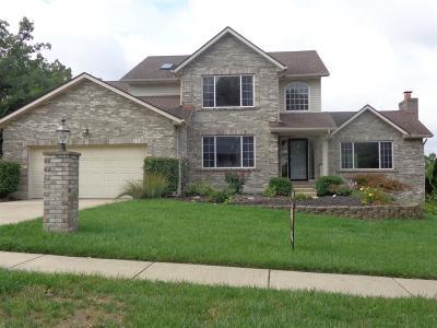 Hamilton Single Family Home For Sale: 781 Bristol View Drive