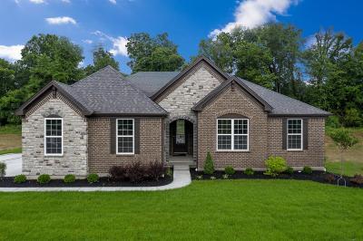 Deerfield Twp. Single Family Home For Sale: 9303 Nolin Orchard Lane