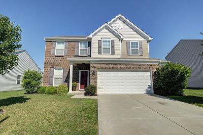 Turtle Creek Twp Single Family Home For Sale: 1751 Greentree Meadows Drive