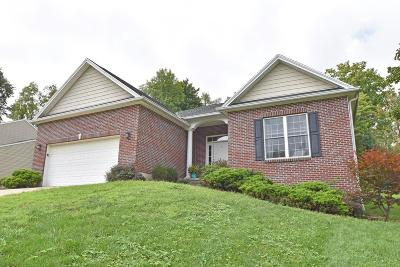 Lawrenceburg Single Family Home For Sale: 20311 Alpine Drive