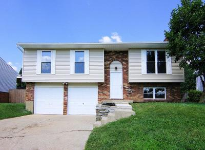 Colerain Twp Single Family Home For Sale: 3114 Regal Lane