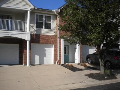 Crosby Twp, Harrison Twp, Miami Twp, Whitewater Twp, Morgan Twp, Ross Twp Condo/Townhouse For Sale: 3705 Chestnut Park Lane