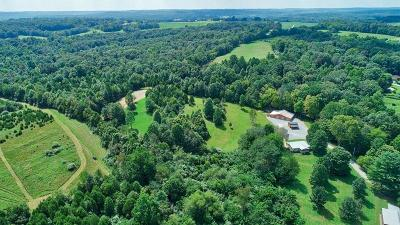 Highland County Single Family Home For Sale: 9826 E Deadfall Road