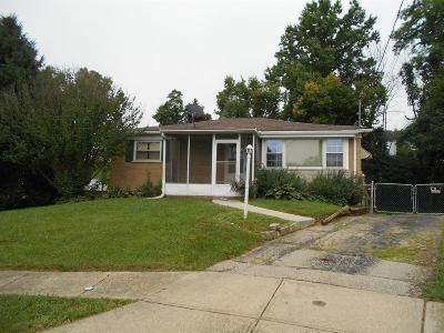Delhi Twp Single Family Home For Sale: 500 Angelnook Drive