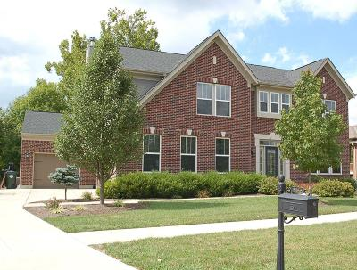 Hamilton Single Family Home For Sale: 5166 Emerald View Drive