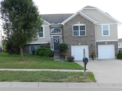 Single Family Home For Sale: 2002 Prairie Clover Drive