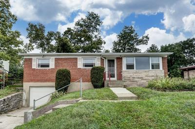 Delhi Twp Single Family Home For Sale: 521 Angelnook Drive