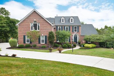 Hamilton County Single Family Home For Sale: 6650 Wyndwatch Drive