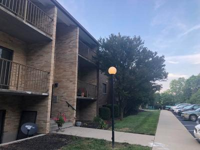 Delhi Twp Condo/Townhouse For Sale: 4270 Paul Road #1