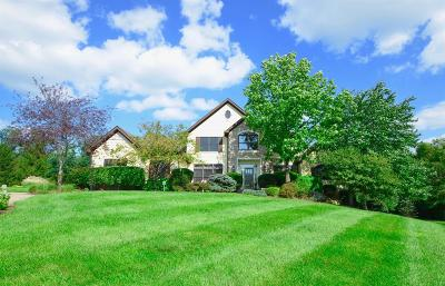 Hamilton County Single Family Home For Sale: 7024 Beech Hollow Drive