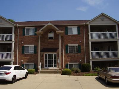 Colerain Twp Condo/Townhouse For Sale: 8830 Carrousel Park Circle #39