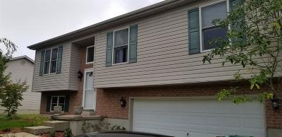 Mt Orab Single Family Home For Sale: 207 Katelin Lane