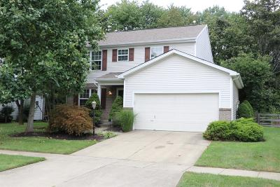 Hamilton Single Family Home For Sale: 6205 Maple Grove
