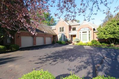 Single Family Home For Sale: 6859 Kenwood Road