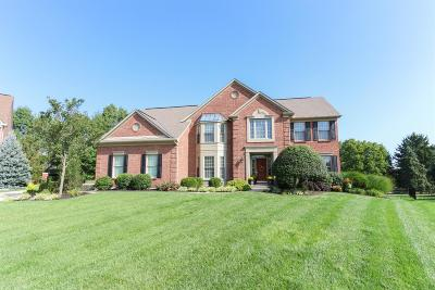 Clermont County Single Family Home For Sale: 6683 Sandy Shores Drive