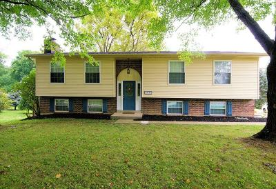 Blue Ash Single Family Home For Sale: 10104 Kenwood Road