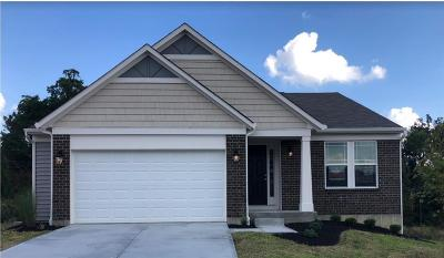 Whitewater Twp Single Family Home For Sale: 8980 Bluejay View Drive