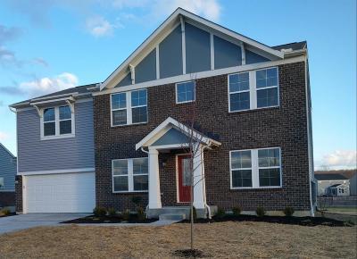 Harrison Single Family Home For Sale: 1240 Michael Drive