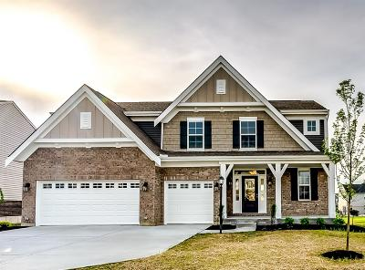 Harrison Single Family Home For Sale: 1236 Michael Drive