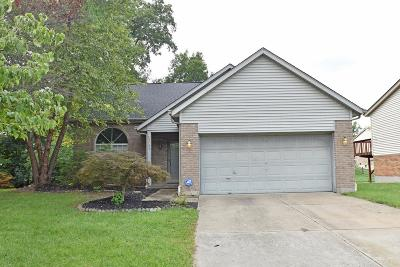 Colerain Twp Single Family Home For Sale: 8703 Beckys Ridge Drive