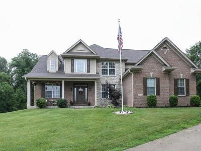 Harrison Twp Single Family Home For Sale: 9895 Howard Road