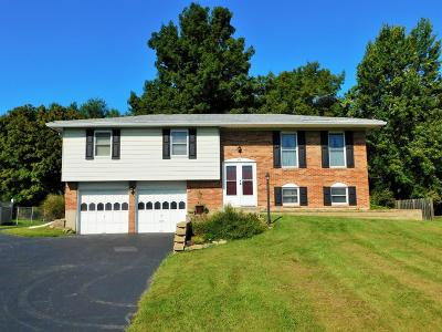 Miami Twp Single Family Home For Sale: 5425 Country Lane